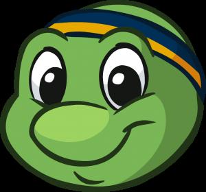 logo-turtlehead